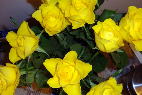 On an ordinary day I once brought these yellow roses to Tatiana. When I bought them they look contracted because of the cold weather. But when they stayed in water for a couple days, Tatiana was crazy about them and she took a picture.